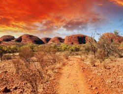 Sydney, Outback and Great Barrier Reef Sydney, Outback & Great Barrier Reef  australia-outback-travelteam