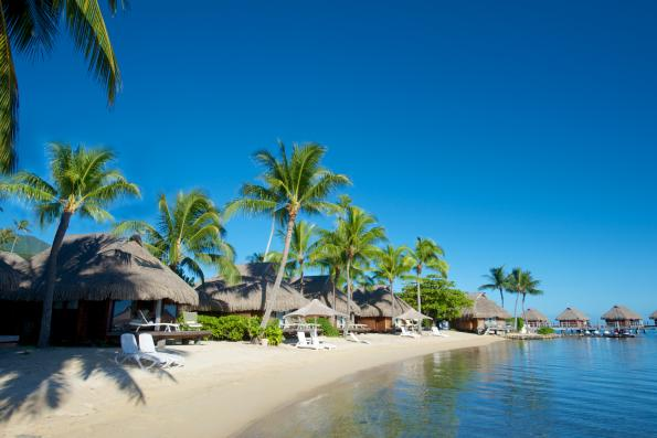 moorea pearl beach bungalow