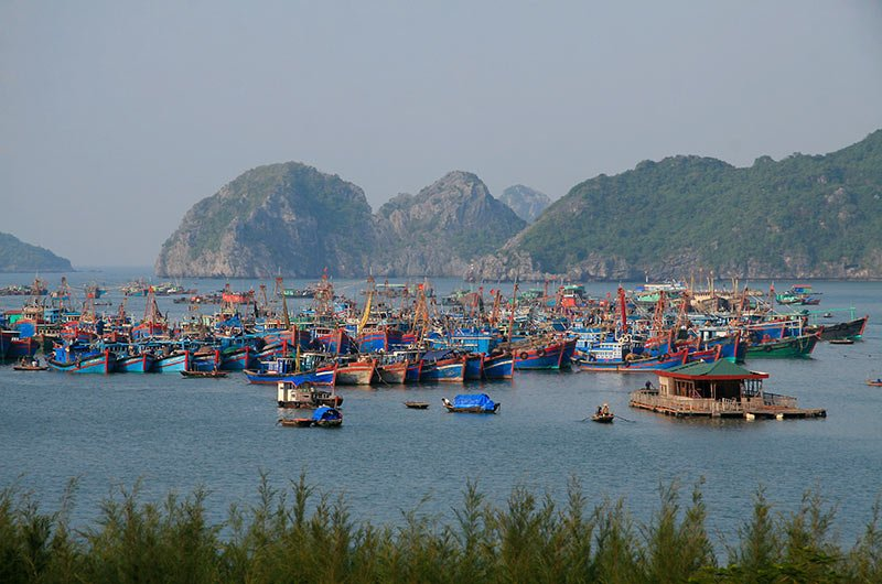 12 Day Classic Vietnam from $949 - Travel Team