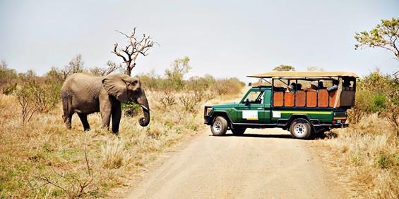 gate 1 south african safari 10 day