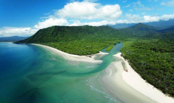 daintree-rainforest-qantas-12-day-queensland