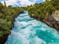 northerndiscovery-new-zealand-traflgar-rotorua-wellington