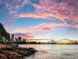 sydney-qantas-vaca-australia