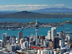 New Zealand central-auckland 100 per new zealand
